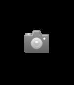 Honig Kräuter